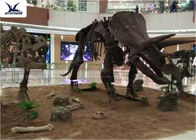 China Amusement Park Facility Life Size Dinosaur Skeleton Replica Artificial Replica Model company