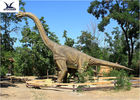 China Amusement Equipment Outdoor Dinosaur Statues Large Robotic Moving Dinosaur Model company