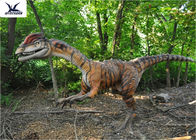 Remote Control Animatronic Life Size Dinosaur Models For Toddler Playground
