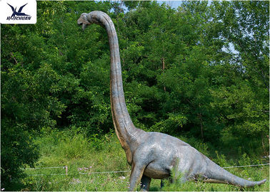 China 18 Meters Giant Realistic Dinosaur Models , Life Size Farm Animal Models  factory